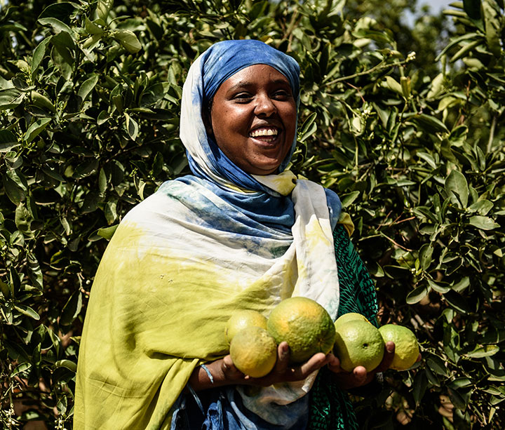 Smiling woman in Somaliland wearing colourful robes stands in front of a tree, holding a handful of oranges which she grew with help from ActionAid donations.